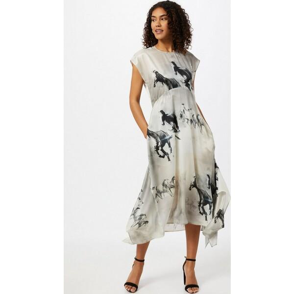 AllSaints Sukienka 'Gianna' ALS0142001000002
